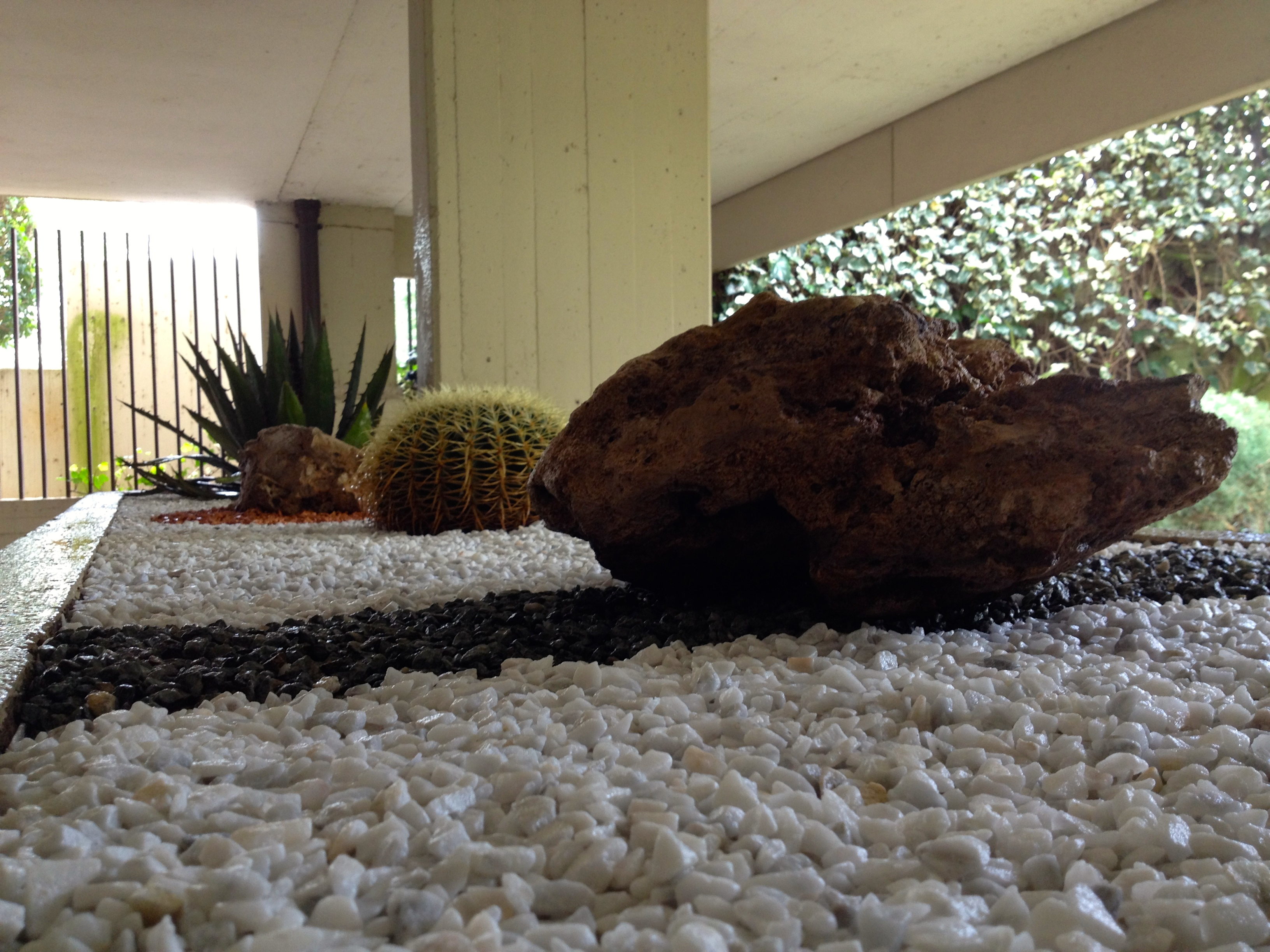 Giardino roccioso in via quasimodo abito verde - Giardino roccioso piante grasse ...