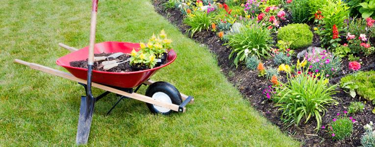 Manutenzione giardini e non solo abito verde for Manutenzione giardini