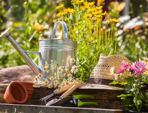 Stress? Curiamolo in giardino!