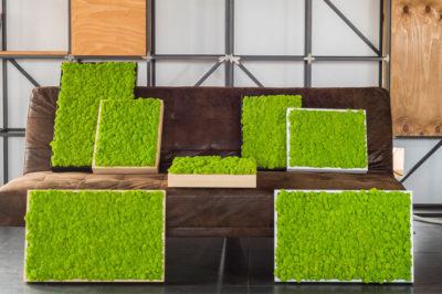 Home abito verde for Verde stabilizzato