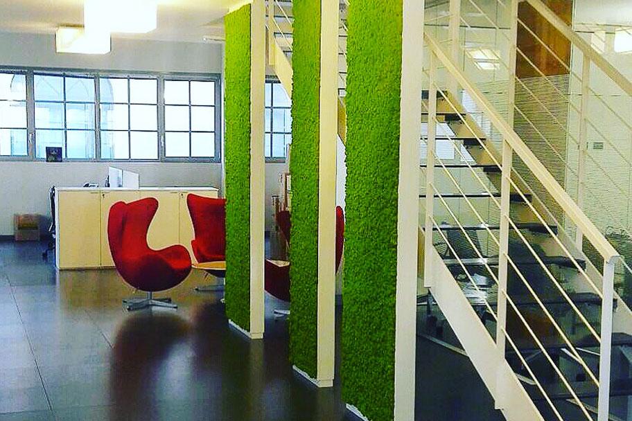 Parete Verde Ufficio : Come rendere un ufficio green con il muschio stabilizzato abito verde