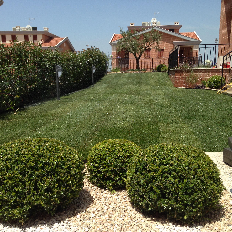 Progetto Un Giardino Mediterraneo Moderno Abito Verde