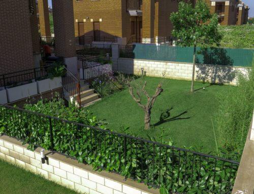 Progetto: un giardino Feng Shui tra oriente ed occidente