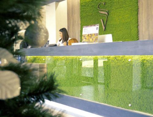 Sara Vecchi Salon I – Lichene ed urban jungle