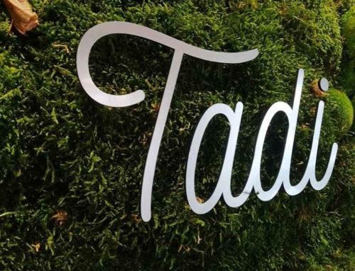 Tadi: Crossing Moss