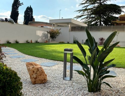 Synthetic Zen Garden